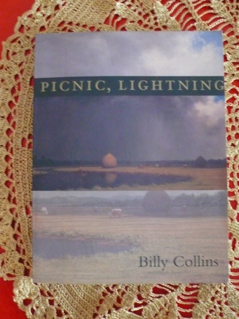 Picnic, Lightning, Billy Collins